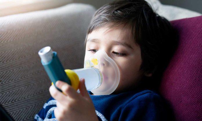 asma cambio climatico