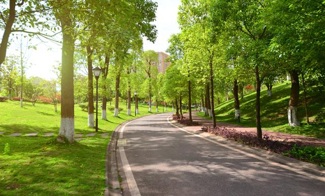 Vivir-en-barrios-con-zonas-verdes-reduce-el-riesgo-de-sufrir-síndrome-metabólico