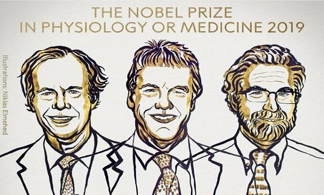 premios-nobel-medicina-2019