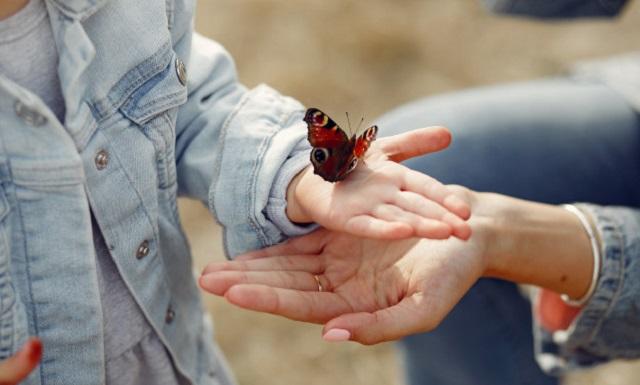 Cura para la piel de mariposa