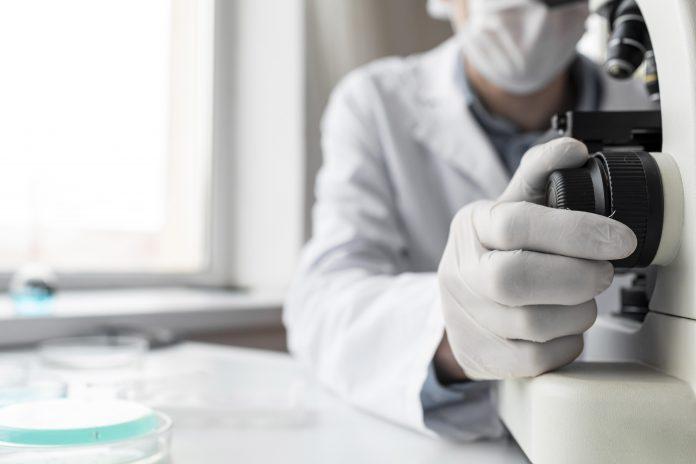 Investigación en inmunología